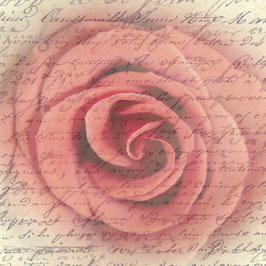 QV_Rose