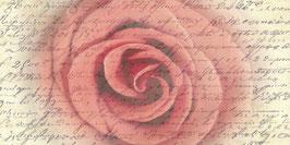 PV_Rose