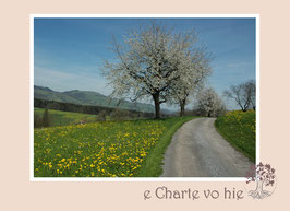 FK_e Charte vo hie 01
