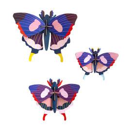 trio papillons machaon