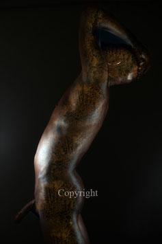 Old Copper Statue - werk 7