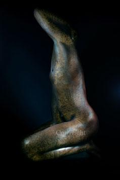 Old Copper Statue - werk 14