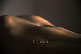 Body Man as Landscape werk 10