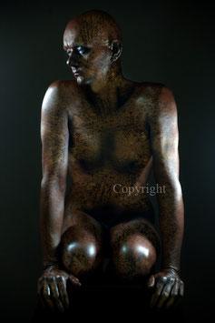 Old Copper Statue - werk 3
