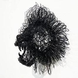 Testa di Leone nera