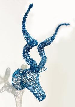 Testa di Kudu - azzurra small