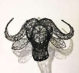 Testa di Bufalo nera