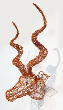 Testa di Kudu - arancione small