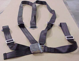 Four Point Seat Belt Set