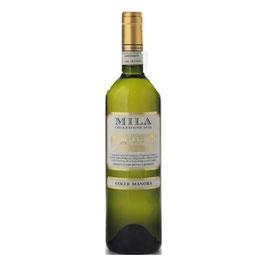 MILA DOC Monferrato 2015 (75cl, 6-er Karton) + (150cl, 1-er Holzkiste)
