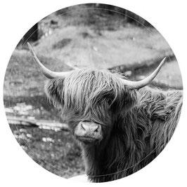 Label-R Muurcirkel highlander 30 cm.