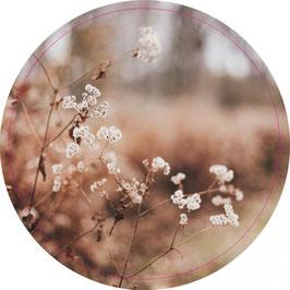 Label-R Muurcirkel Dry flowers 30 en 40 cm.