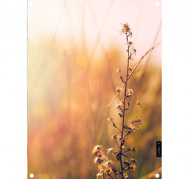 Label-R tuinposter nature