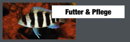 """Aquarium Futter """"JBL"""" 3"""