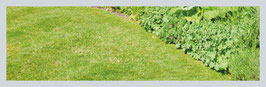 Garten-Haus Pumpen  B9