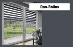 Plissees Duo-Rollos 1