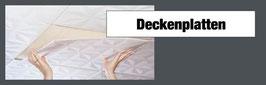 Deckenplatten 2