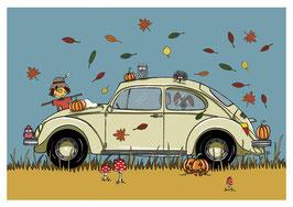 Käfer Herbst