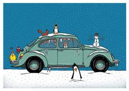 Käfer Winter