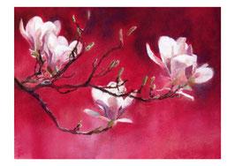Kunst-Doppelkarten mit hochwertigem Briefumschlag in Cellophantütchen, Motiv:  majestätische Blütenpracht.