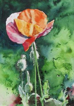 Kunstdruck auf hochwertigem Bilderdruckpapier Größe Din A 4. Motiv: Einfach schön