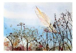 Kunst-Doppelkarten mit hochwertigem Briefumschlag im Cellophantütchen. Motiv: federleicht.
