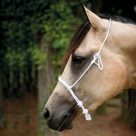 Noseband by Francois Gauthier