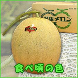 S-50-1 夕張メロン(個選)/1.6kgx2玉