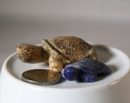 Edelstein Schildkröten