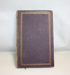 Die verlorene Handschrift von Gustav Freytag, 2. Teil, 1873