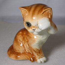 Katze von Goebel