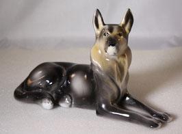 Schäferhund von Hollohaza 2.