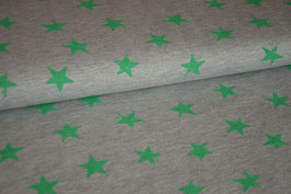 Sweat Destroyed Stars grey/green