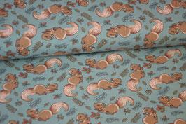Baumwolljersey Eichhörnchen