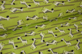 Jersey Zebras
