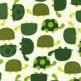 Tortugas.