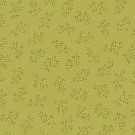 Olive v 1.
