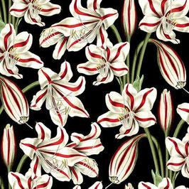 Yuletine botanica.