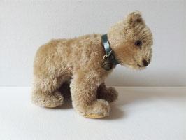 kleiner Bär, Jungbär von Steiff