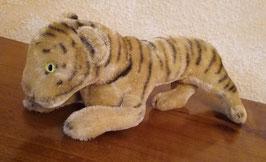 großes Tigerbaby