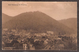 38667   (W-3388)   Bad Harzburg   -mit Burgberg-   (P00136)