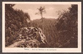 998...   (O-5808)   Tabarz   -Blick vom Rötelfelsen in den Lauchagrund-   (PK-00169)