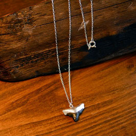 Antique Sharktooth Necklace