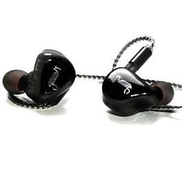 Écouteurs Live HS2