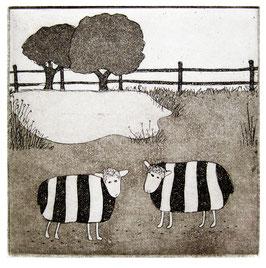 Schafspärchen