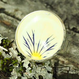 1154 Cabochons-Ring gross mit echter Blüte Viola gelb