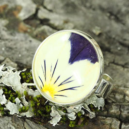 1155 Cabochons-Ring gross mit echter Blüte Viola gelb/blau