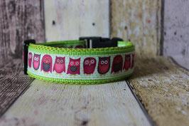 Halsband Eule Kiwi 5