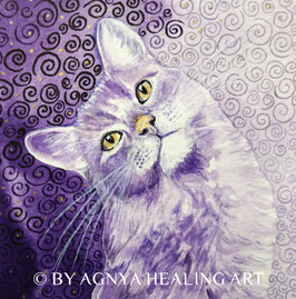MEDITATION CAT purple vision | Handkolorierter Kunstdruck | mit CD MEDITATION CAT (Schnurr®Musik)