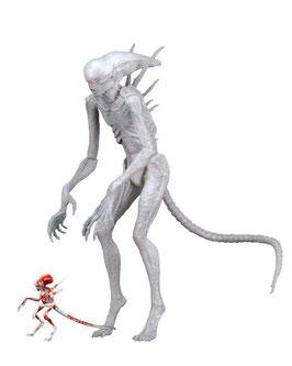 Neomorph Alien Covenant Actionfigur 23cm Neca